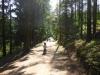 g180714017-MTBO Zvule, po startu, kluci jedou v lese