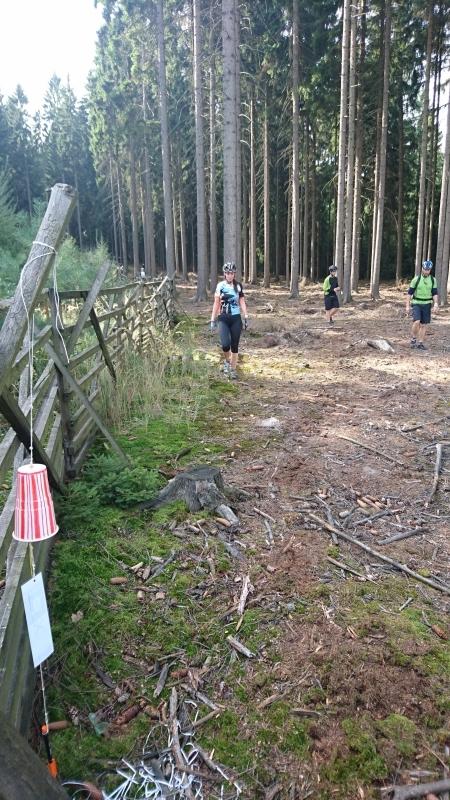 g161001014- GoGo Race, Kata na kontrole v lese pod Loustinem