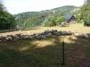 g180811016-Bike music fest, ovce v Pasekach