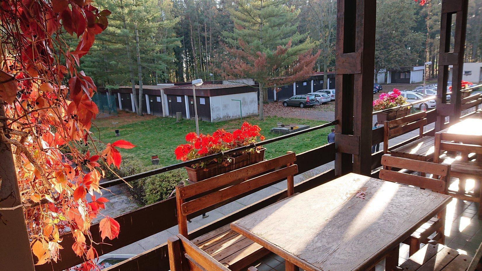 g191026022-Lesni-hotel-ROB-2019