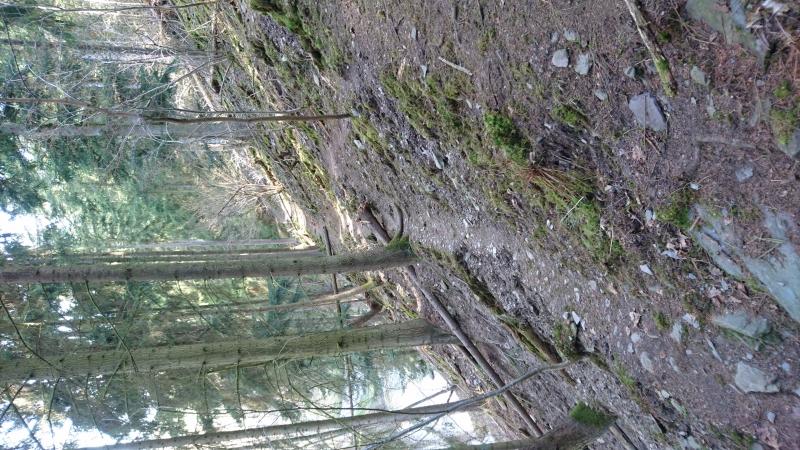 g180414011-Najizdeni kobylek s Karlem
