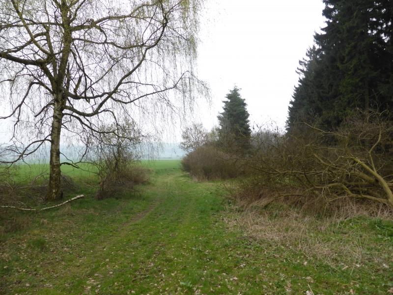 g140405017-Mapovani terenu na Kobylky