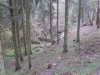 g140405009-Mapovani terenu na Kobylky